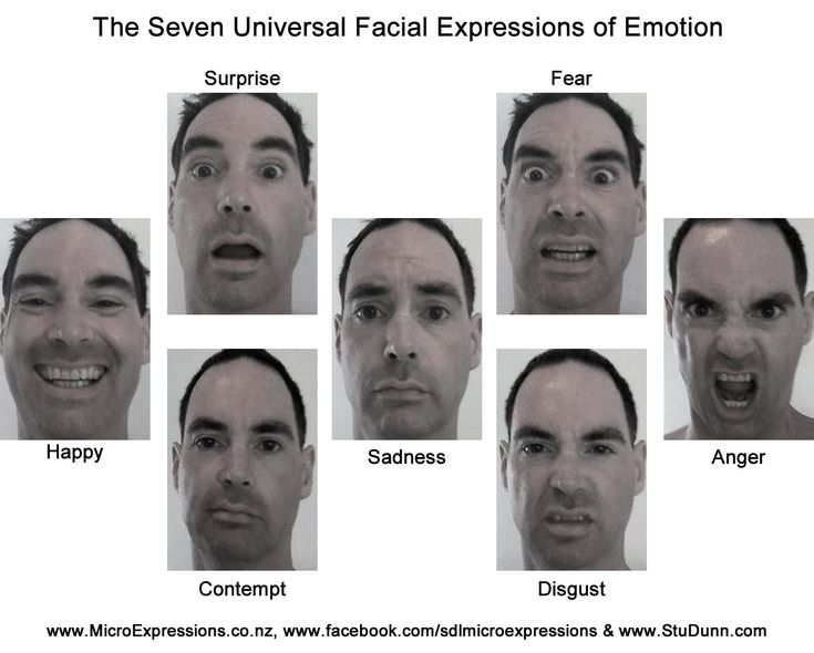 emotion and facial expression