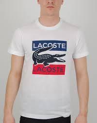 lacoste t shirt - Tìm với Google