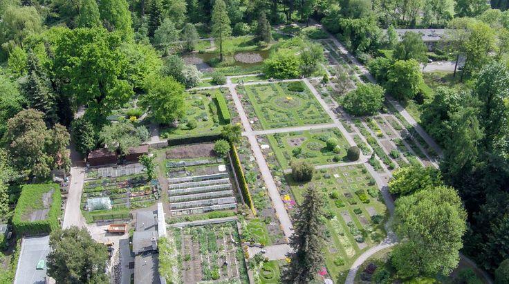 Ogród botaniczny z lotu ptaka [ZDJĘCIA Z DRONA] - Zdjęcie 57335 - LoveKraków.pl