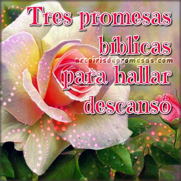 Tres promesas de la Biblia para hallar descanso   Arcoiris de Promesas