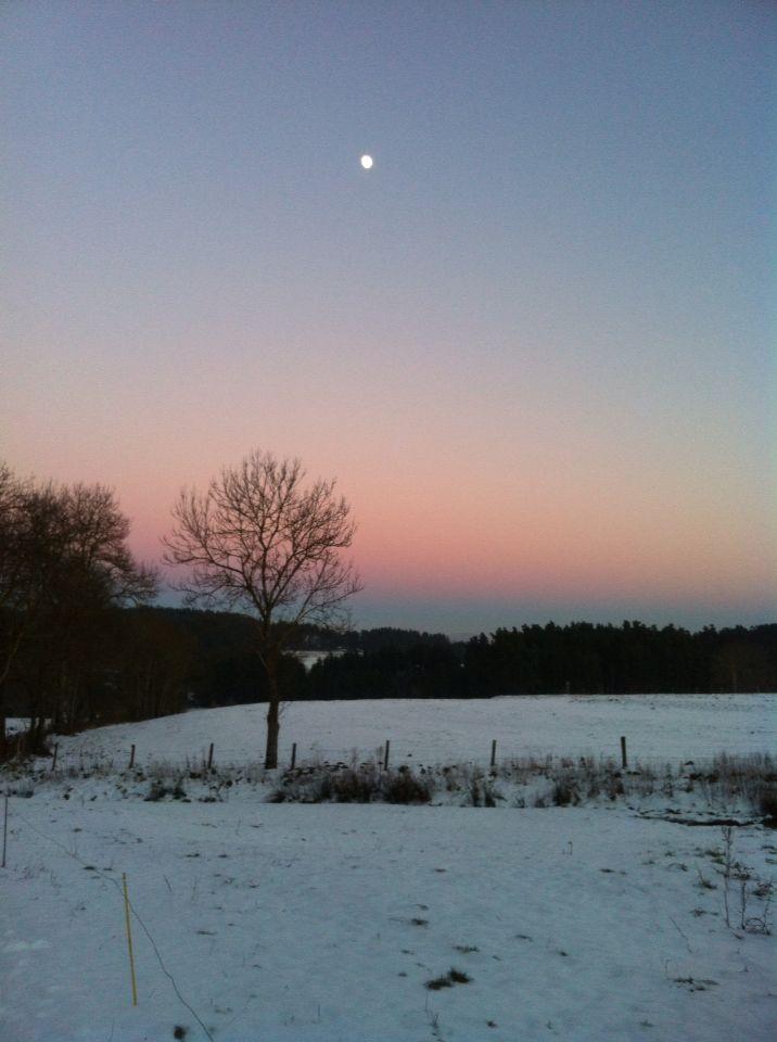Haute-Loire, Auvergne, France, snow, twilight, winter