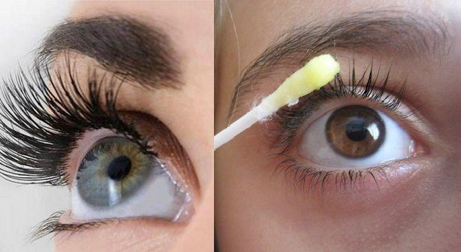 Cómo hacer crecer las cejas y las pestañas
