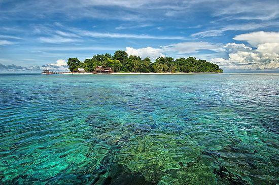 사진은 권력이다 :: 말레이시아에서 유명한 스쿠버 다이빙 장소들