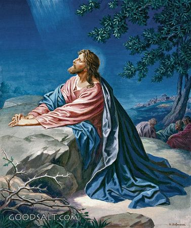 MATTHEW 6:9-13   9. So this is how you should pray:  'Our Father in heaven,     we pray that your name will always be kept holy.  10. We pray that your kingdom will come—     that what you want will be done here on earth, the same as in heaven.  11. Give us the food we need for today.  12. Forgive our sins,     just as we have forgiven those who did wrong to us.  13. Don't let us be tempted,     but save us from the Evil One.'  AMEN!