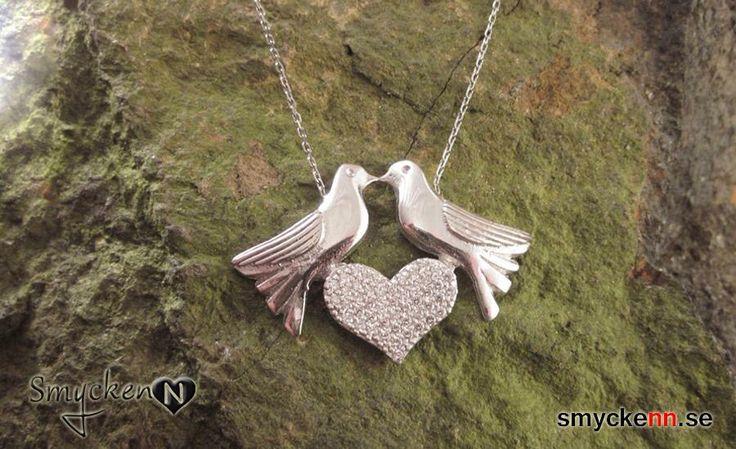 Silverhalsband fåglar med ett hjärta