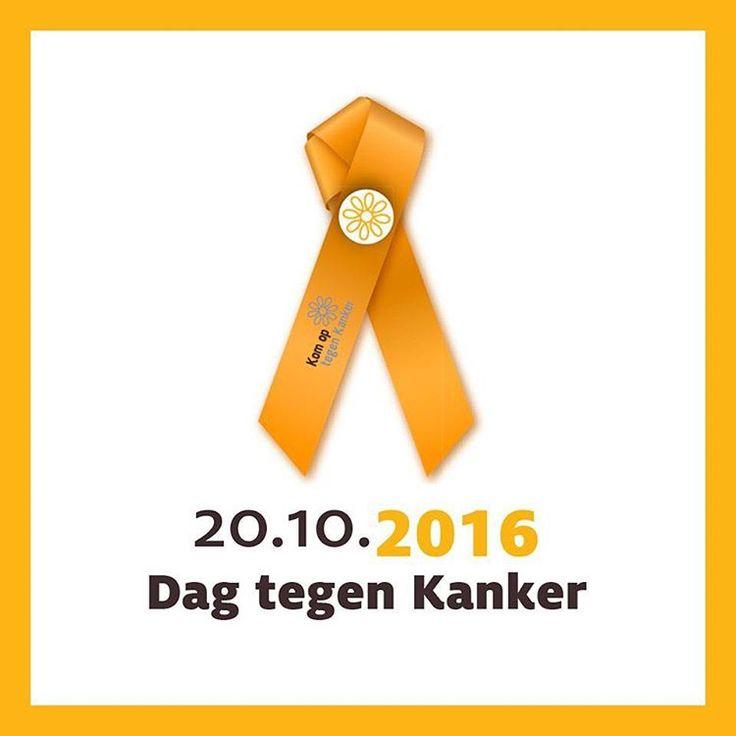 Heel veel sterkte aan iedereen die tegen kanker aan het vechten is of er ooit mee te maken heeft gehad! 🙏🏻😥 #sterkte #dagtegenkanker #moeilijkeperiode #gemis #papa #herinneringen