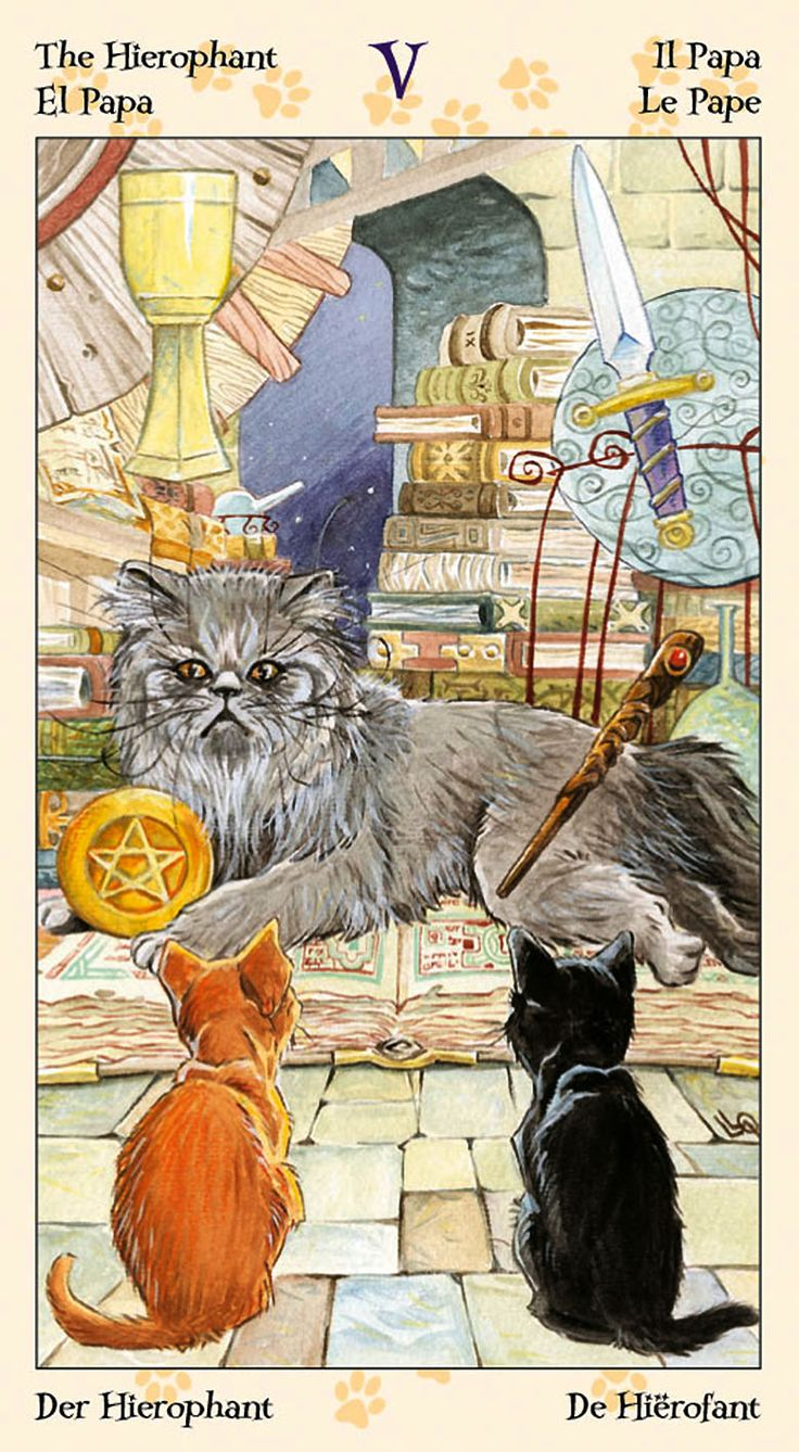 The Hierophant - Tarot of the Pagan Cats
