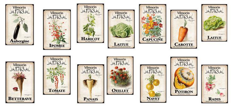 Visuels des14 variétés de semences sélectionnées pour la collection 1743.