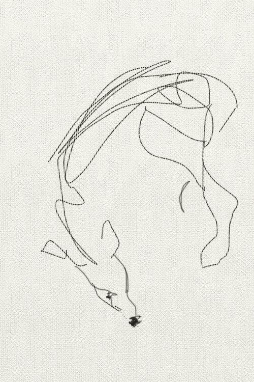 Contour Line Drawing Of Dogs : Best contour line sketches images on pinterest