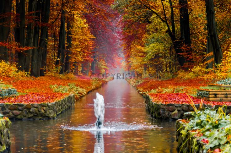 SCHLOSSPARK LUDWIGSLUST Gerade gefunden auf http://photographies_and_more-shop.fineartprint.de