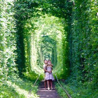 【doru_euro】さんのInstagramをピンしています。 《外貨両替ドルユーロ、制作チームの平石です。  本日は、ウクライナ西部のクレーヴェンに存在する 『恋のトンネル(愛のトンネル)』をご紹介します!  クレーヴェンとオルツィヴを結ぶ鉄道の クレーヴェン寄りの線路には、画像のように両側に木が生い茂っていてきれいなアーチを作っているそうです。  この風景が非常にロマンチックなために恋のトンネル(愛のトンネル)と呼ばれるようになったとのこと。  大切な誰かと一度は訪れてみたい場所ですね。  #ウクライナ #クレーヴェン #恋のトンネル #幻想的 #愛のトンネル #オルツィヴ #アーチ #風景 #ロマンチック #世界遺産 #トトロ #森 #自然 #観光 #有名 #絶景 #美しい #旅行 #旅 #ドル #ユーロ #外貨宅配 #外貨両替 #表参道 #骨董通り》