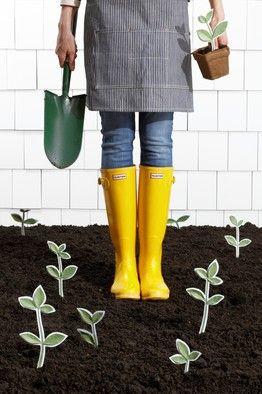 A guide to gardening for the not-(yet)-so-into-gardeningRabbit Pl Spade, Design Gardens, Clarington Rabbit Pl, Rabbit Spade, Wsj Recommendations Gardens, Not Yet So Into Gardens Wsj, Street Journals, Gardens Guide, Yellow Hunters