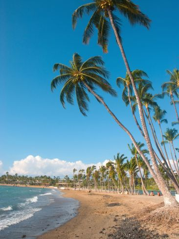 Anaeho'Omalu Beach, Kohala Coast, Hawaii. The Big Island of Hawaii. #beach #kohala #hawaii