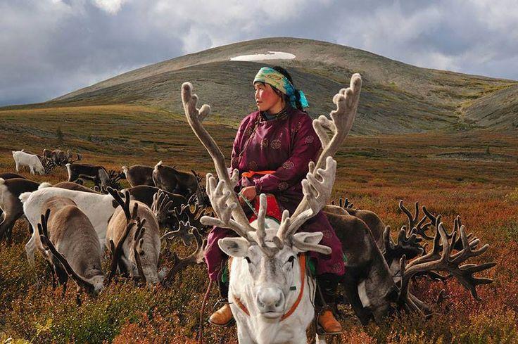 koczownicze plemnie Dukha z północnej Mongolii, foto: Hamid Sardar-Afkhami