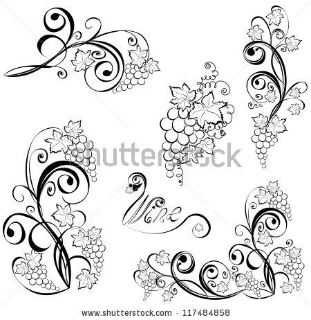 stock vector : Grapevine. Vector wine design elements.
