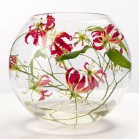 Fishbowl display of gloriosa lilies by Fleurs,Horsham