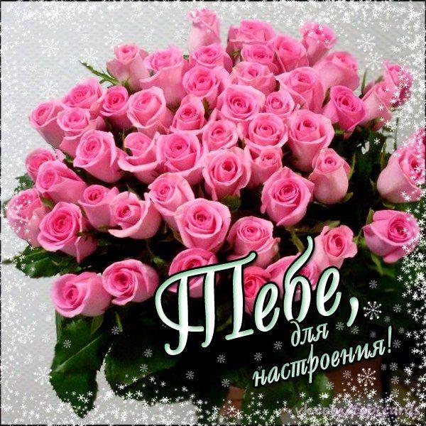 Юбилеем, открытки цветы милой насте