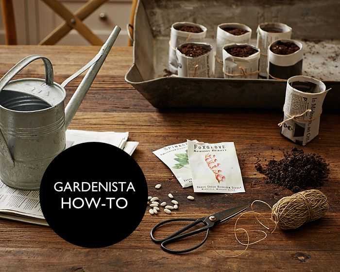 Gardening 101: How To Sprout A Seed