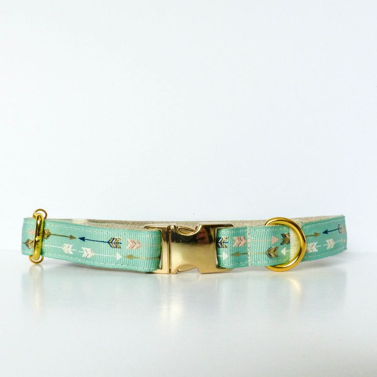 Mint green arrows dog collar, Trendy dog collar, mint dog collar, Arrows, Fancy dog collar, Gold dog collar, Metallic - 5/8 inch (16mm) wide by NicSews on Etsy https://www.etsy.com/listing/252548313/mint-green-arrows-dog-collar-trendy-dog