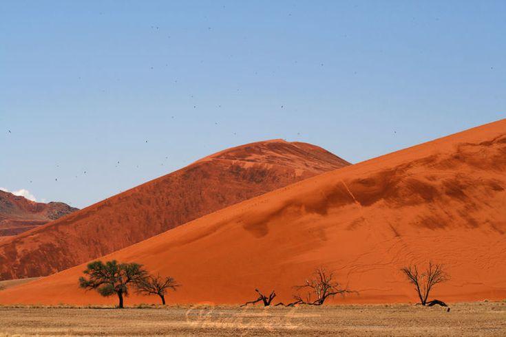 """""""the desert birds"""" von Bernd Hoyen #fotografie #photography #fotokunst #photoart #berg #berge #mountain #mountains #rot #red #braun #brown #wüste #wüsten #desert #deserts #natur #nature #landschaft #landschaften #landscape #landscapes #namibia #sossusvlei"""