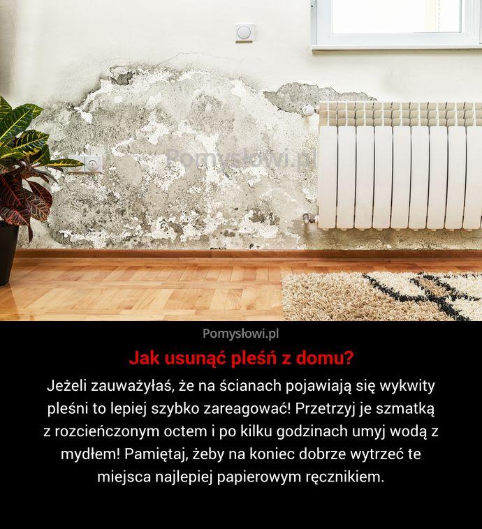 Jeżeli zauważyłaś, że na ścianach pojawiają się wykwity pleśni to lepiej szybko zareagować! Przetrzyj je szmatką z rozcieńczonym octem i ...