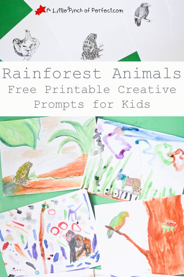 Rainforest Animals: Printable Coloring Prompts for Kids | A Little Pinch of Perfect