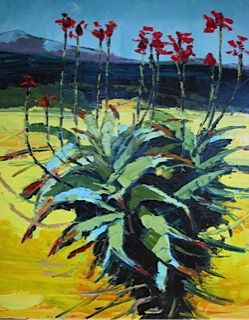 Overberg July Aloe Canola nr Annemarie du plooy