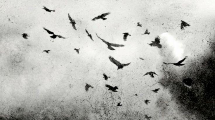 Baciamibartali The Mournful Gloom