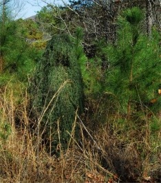 leafy green ghillie suit
