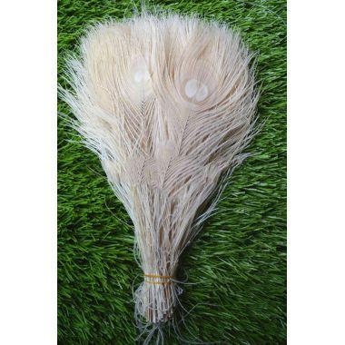 Окрашенные перья павлина 25-30 см. Белого цвета