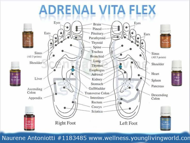 En-R-Gee on your adrenal VitaFlex points before bedtime and you'll wake easier in the morning with your overall energy stable throughout the day and no afternoon crash.
