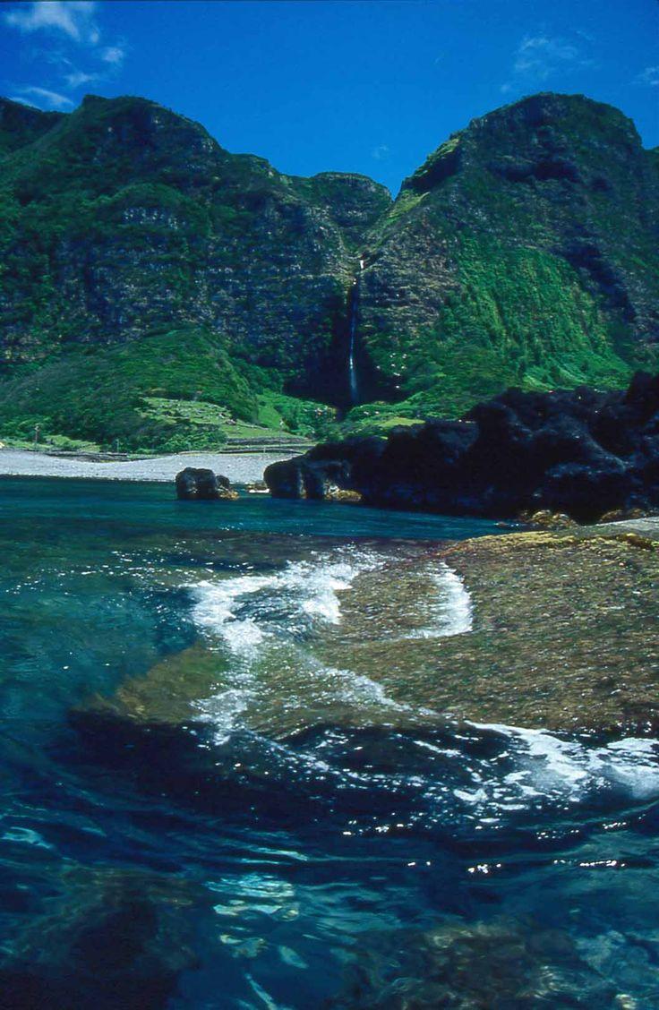 Flores - Azores