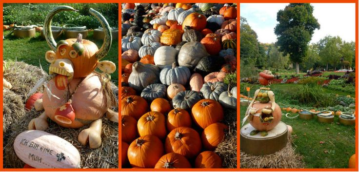 Schloss Ludwigsburg Pumpkin Festival (Kurbisfest) This wonderful fall pumpkin festival takes place each year near Stuttgart, Germany. Each year has a different theme so that you want to keep coming back, year after year!