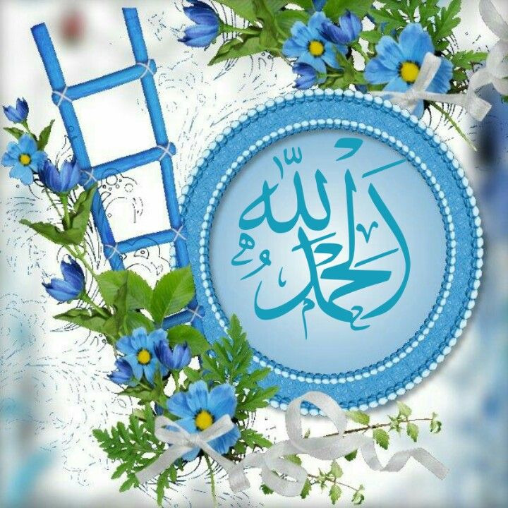 DesertRose,;,AlHamdulillah,;,