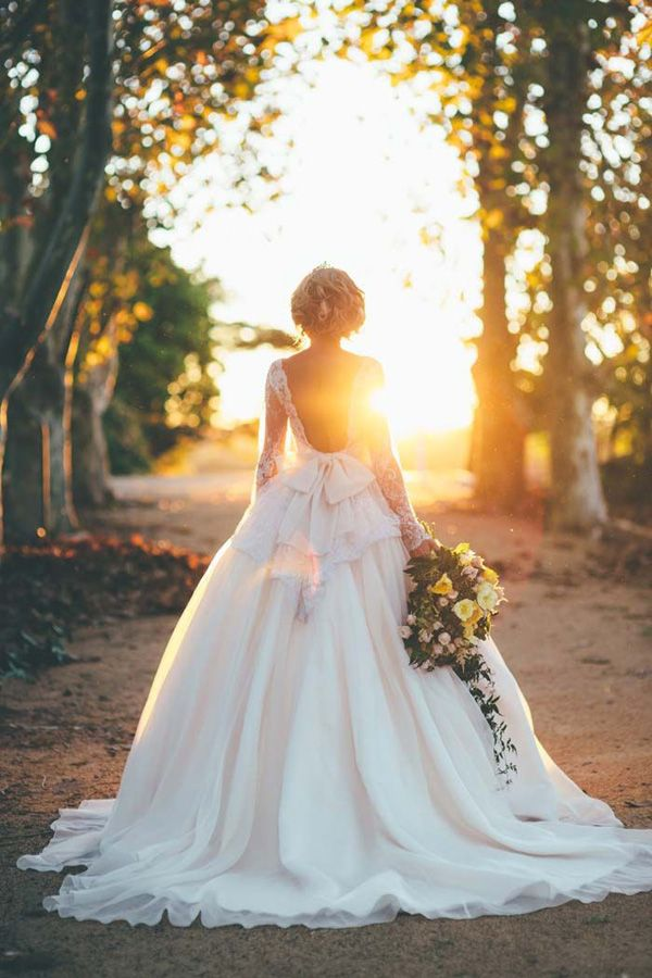 Elizabeth de Varga Backless Ball Gown Lace Wedding Dress
