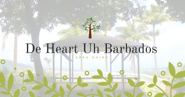 Explore this charming central area of Barbados with it's natural wonders and rich cultural heritage.