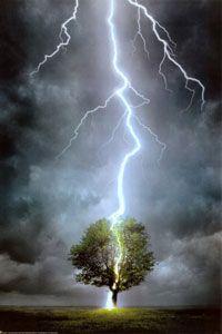 Lightning splitting tree