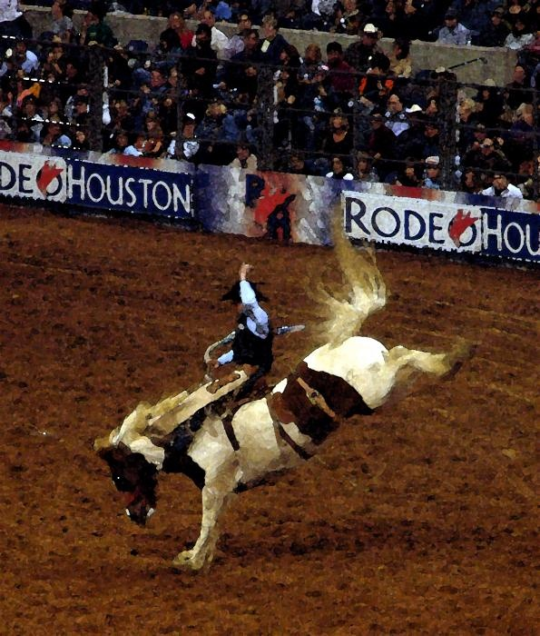 Best Attractions In North Texas: 120 Best Houston Rodeo Images On Pinterest