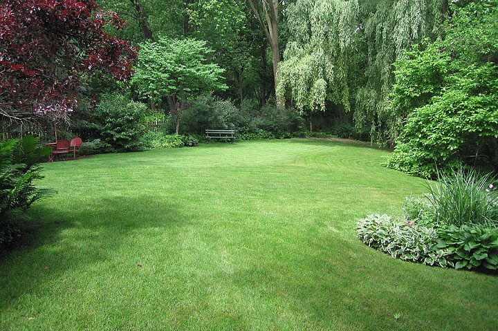 The most important factor to consider in selecting a lawn grass is its ability to survive the intended use of the yard. The first consideration is sunlight.