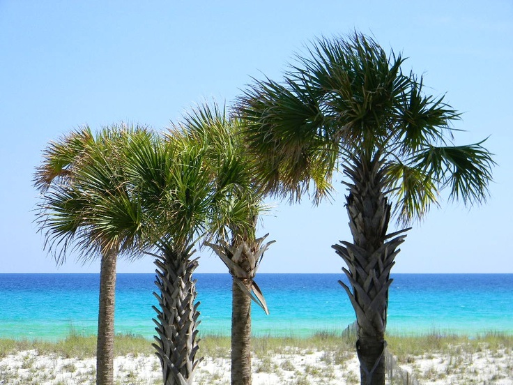17 Best Images About Navarre Beach On Pinterest