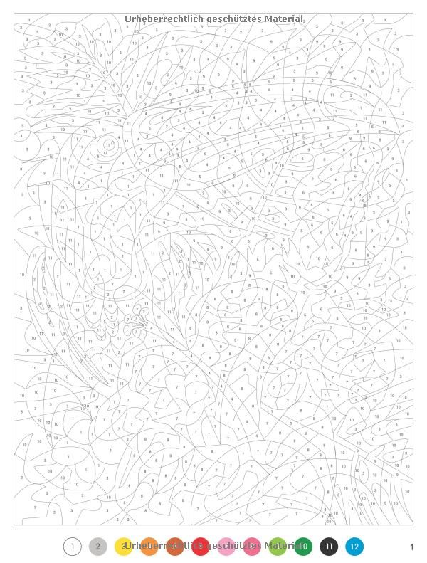 96 best dot to dot / coloring by numbers images on Pinterest | Adult ...