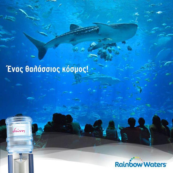 Είναι το μεγαλύτερο ενυδρείο στον κόσμο και βρίσκεται στην Ατλάντα. Το Georgia Aquarium διαθέτει περισσότερα από 120.000 ψάρια! Photo Credit: designs-forme.com