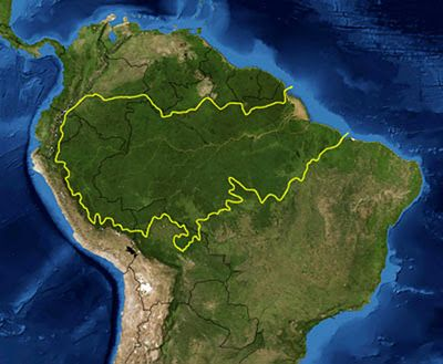 """Known as the """"Lungs of the world"""", the Amazon Forest is the world's largest, with approximately 7 million square kilometers. It is located north of South America and its territory extends to nine countries, which are: Guyana, Suriname, French Guiana, Venezuela, Colombia, Peru, Bolivia, Ecuador and most of Brazil."""