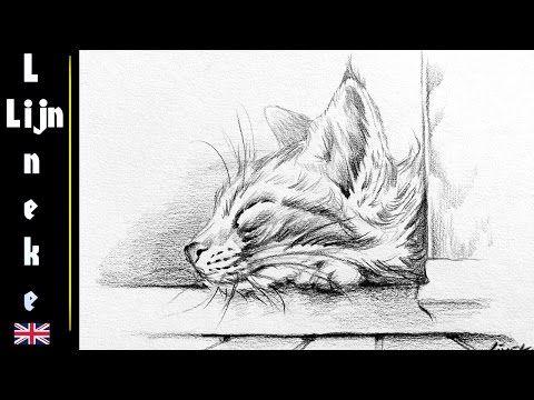 Hoe teken je een kat / dieren tekenen / #2 - YouTube