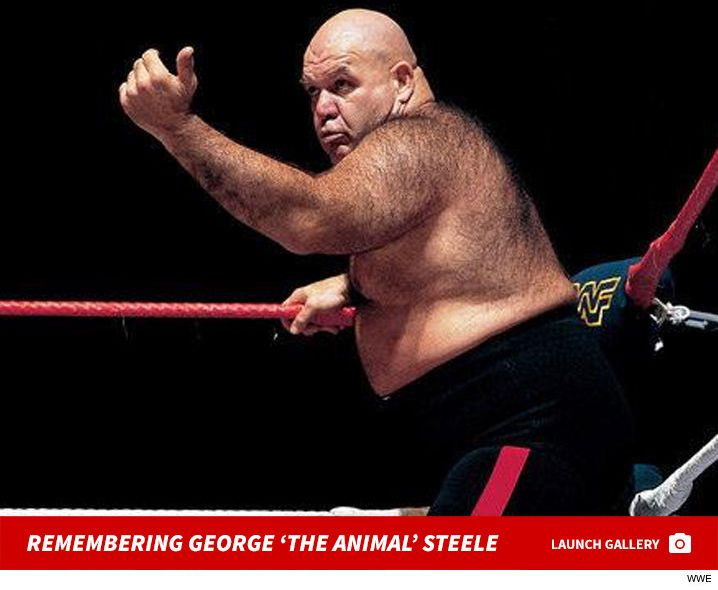 WWE Hall of Famer George 'The Animal' Steele Dead at 79 (PHOTO GALLERY) - http://blog.clairepeetz.com/wwe-hall-of-famer-george-the-animal-steele-dead-at-79-photo-gallery/