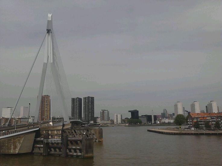 Rotterdam in Zuid-Holland