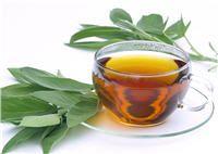 «Salvia savatrix» oula plante qui sauve et qui guérit, la sauge est connue depuis l'Antiquité pour ses vertus multiples. Elle fût longtempsassociée à l'immort…