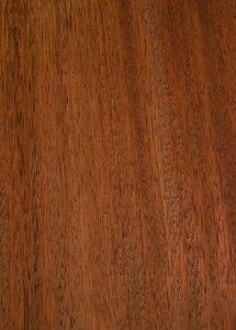 tali wood - Google 검색