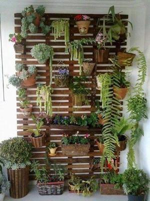 Lovely indoor vertical garden by cathy