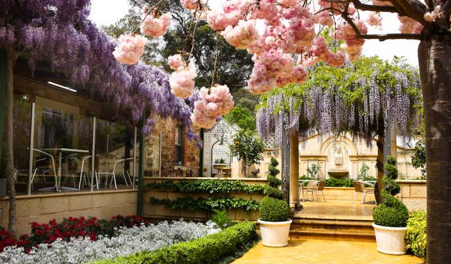 Adelaide's 10 blooming best garden cafes | Australian Traveller The Topiary Café at Newman's Nursery Tea Tree Gully, Adelaide South Australia .
